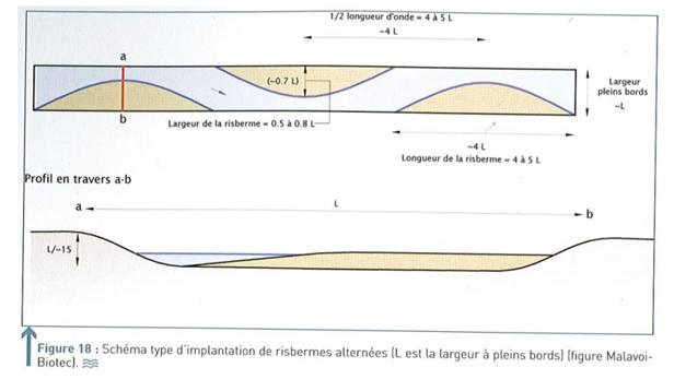 Schéma type d'implantation de risbernes alternées