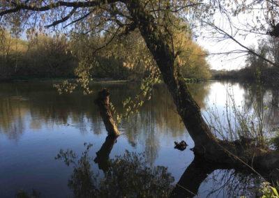L'Isle et sa biodiversité
