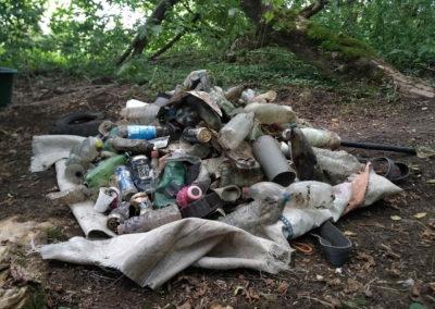 Nettoyage des zones humides